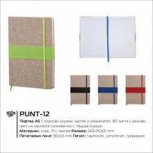 PUNT-12